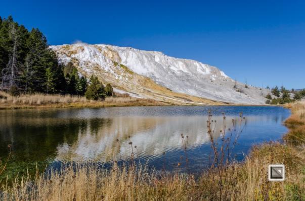 USA - Wyoming - Yellowstone National Park-97