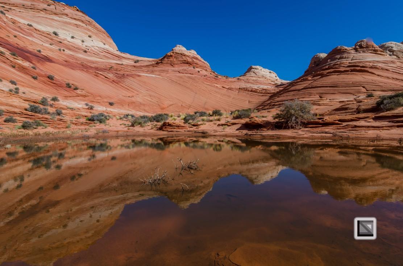 USA - Arizona - Vermillon Cliffs-14