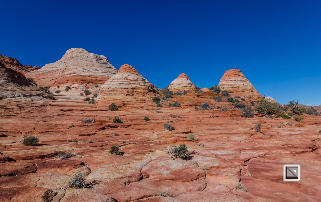 USA - Arizona - Vermillon Cliffs-15