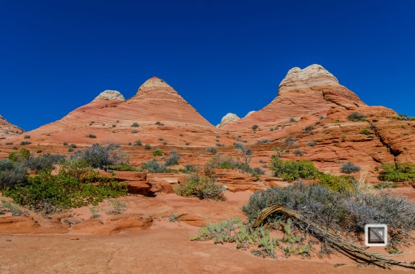 USA - Arizona - Vermillon Cliffs-3