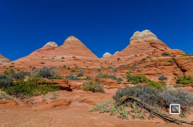 USA - Arizona - Vermillon Cliffs-3
