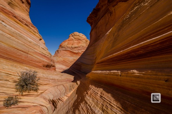USA - Arizona - Vermillon Cliffs-40