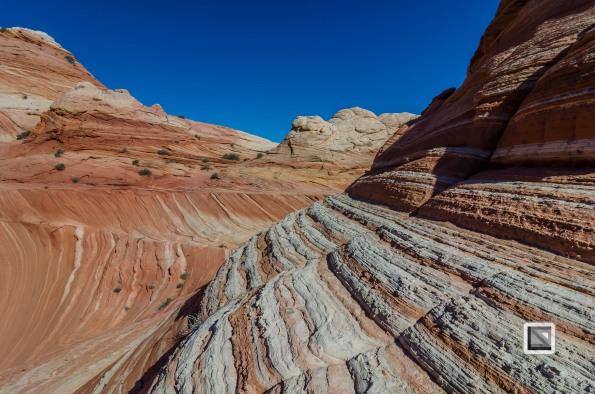 USA - Arizona - Vermillon Cliffs-5