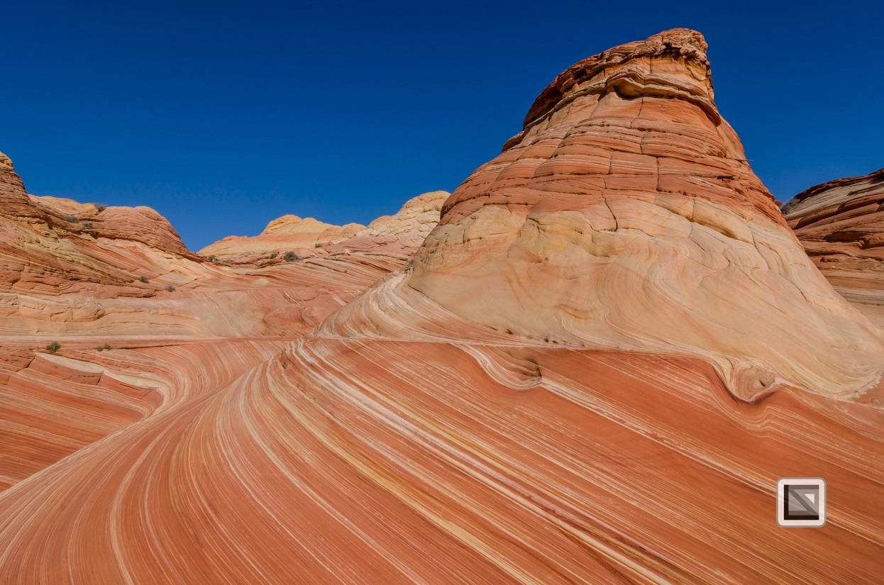 USA - Arizona - Vermillon Cliffs-53