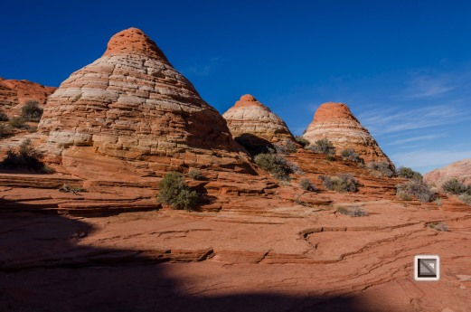 USA - Arizona - Vermillon Cliffs-67