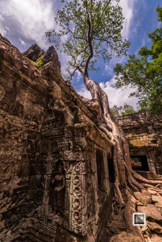 Siem Reap - Angkor Wat-100