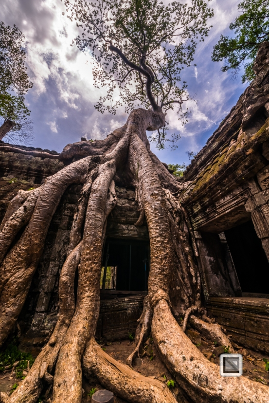 Siem Reap - Angkor Wat-102