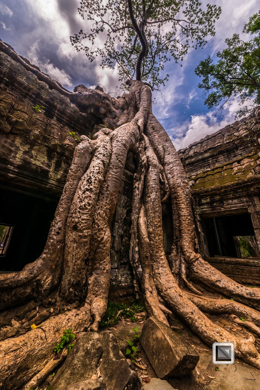 Siem Reap - Angkor Wat-103