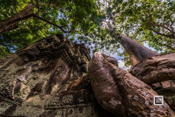 Siem Reap - Angkor Wat-107