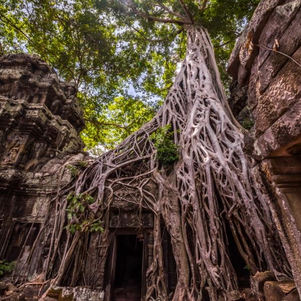 Siem Reap - Angkor Wat-108