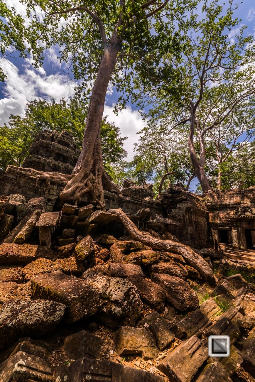 Siem Reap - Angkor Wat-113