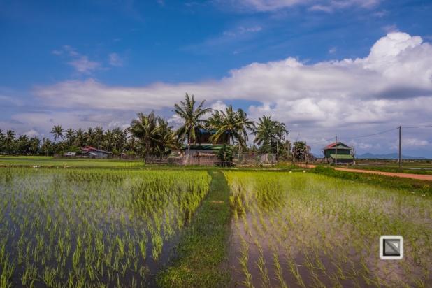 Kampot-147