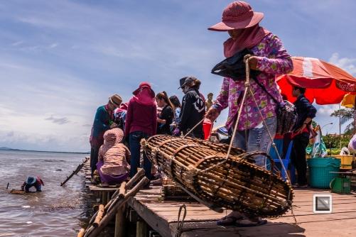 Kampot-24