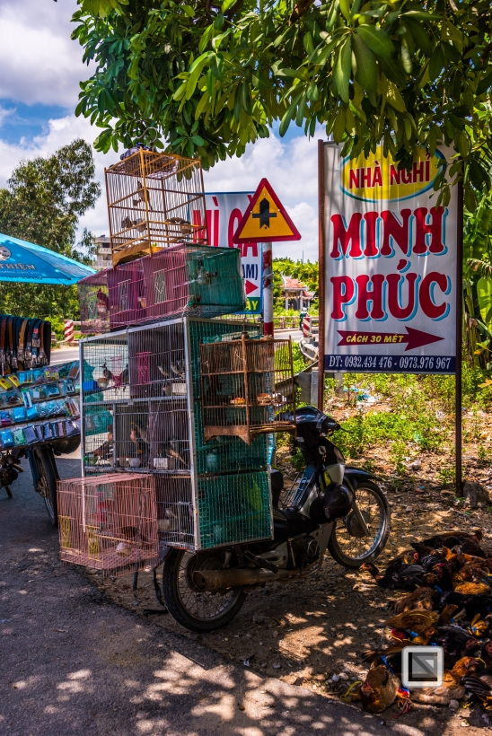 Da_Nang_Area-Vietnam-1