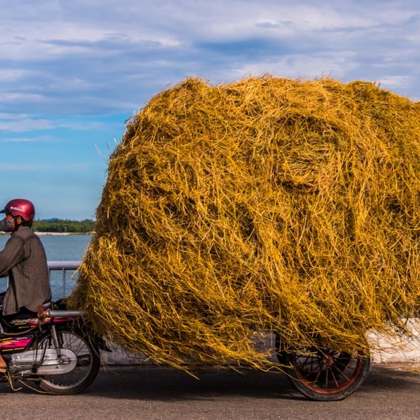 Da_Nang_Area-Vietnam-23