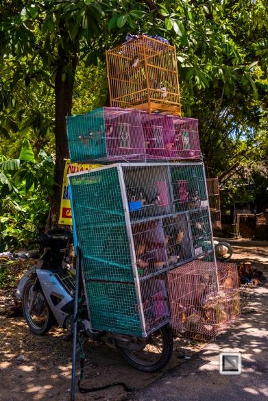 Da_Nang_Area-Vietnam-3