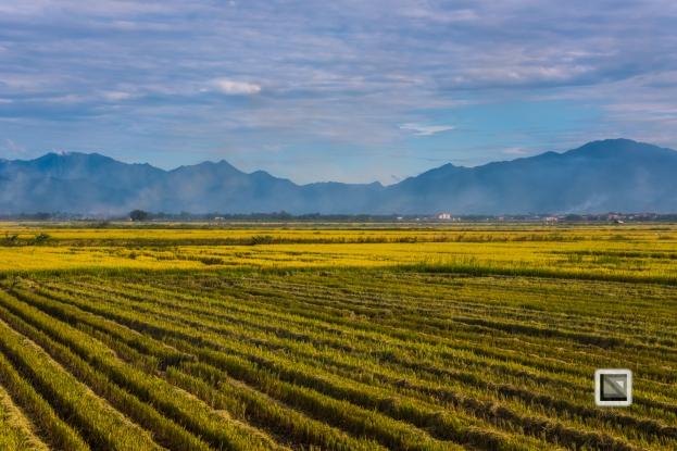 Da_Nang_Area-Vietnam-36
