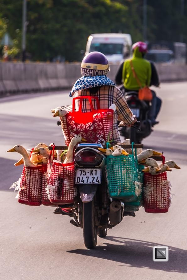 Da_Nang_Area-Vietnam-38