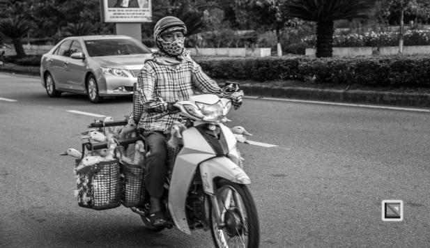Da_Nang_Area-Vietnam-41