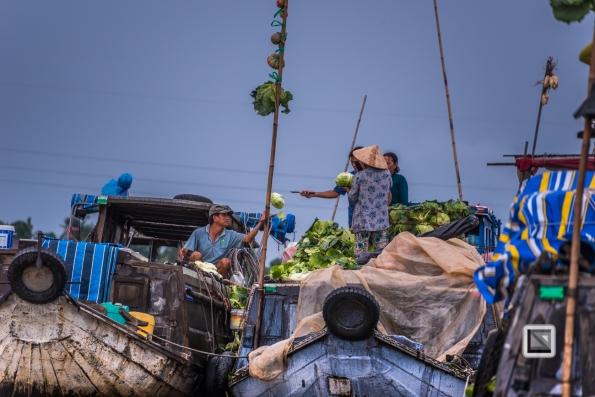 Mekong Delta - Vietnam_-24