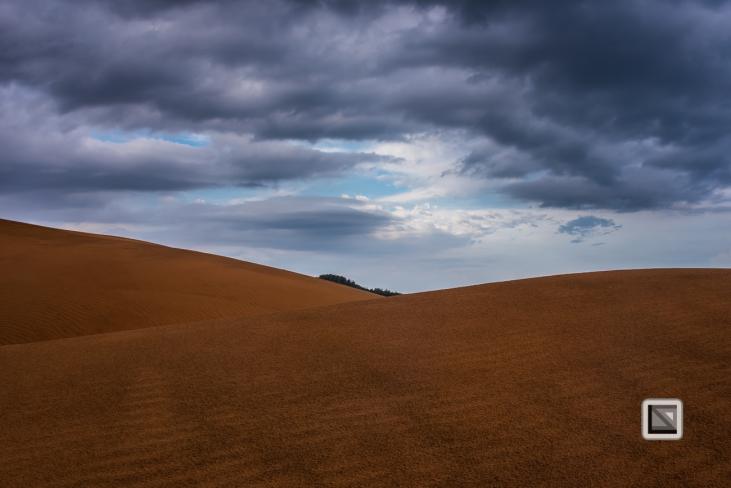 Mui Ne Sand Dunes - Vietnam-2