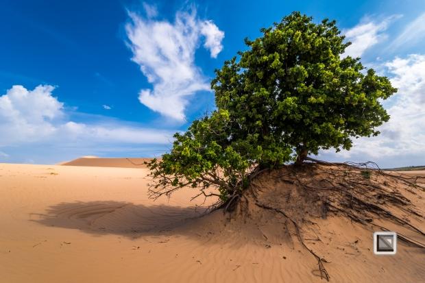 Mui Ne Sand Dunes - Vietnam-21