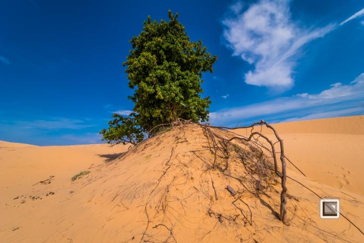 Mui Ne Sand Dunes - Vietnam-22