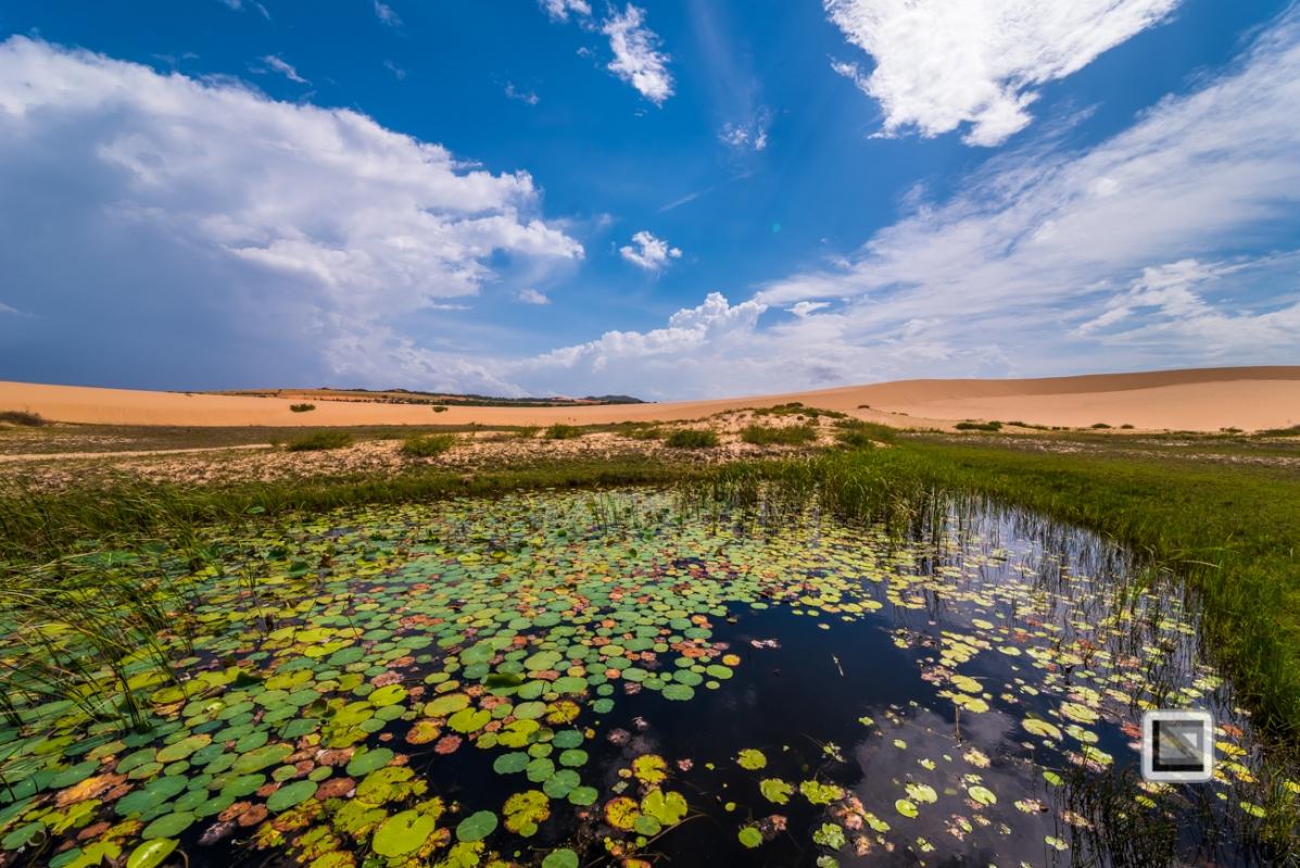 Mui Ne Sand Dunes - Vietnam-45