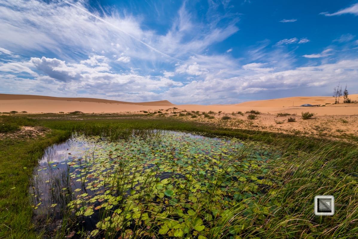 Mui Ne Sand Dunes - Vietnam-47