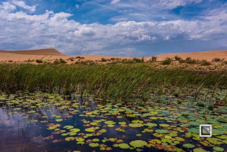 Mui Ne Sand Dunes - Vietnam-48