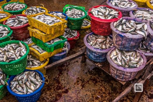 Phan Thiet Fish Market - Vietnam-5