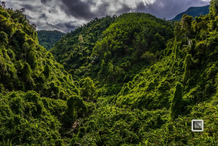 vietnam-hcm_trail-khe_sanh-to-phong_nha-812