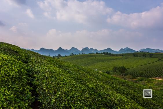 vietnam-moc_chau-son_la_province-15