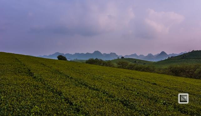 vietnam-moc_chau-son_la_province-27