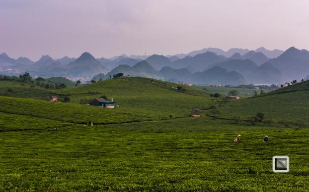 vietnam-moc_chau-son_la_province-34