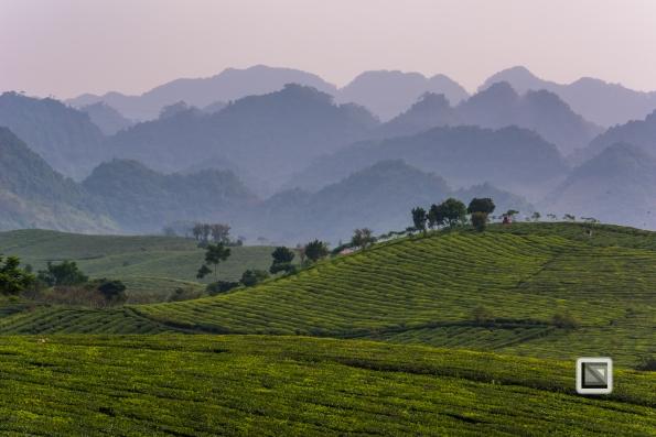 vietnam-moc_chau-son_la_province-37