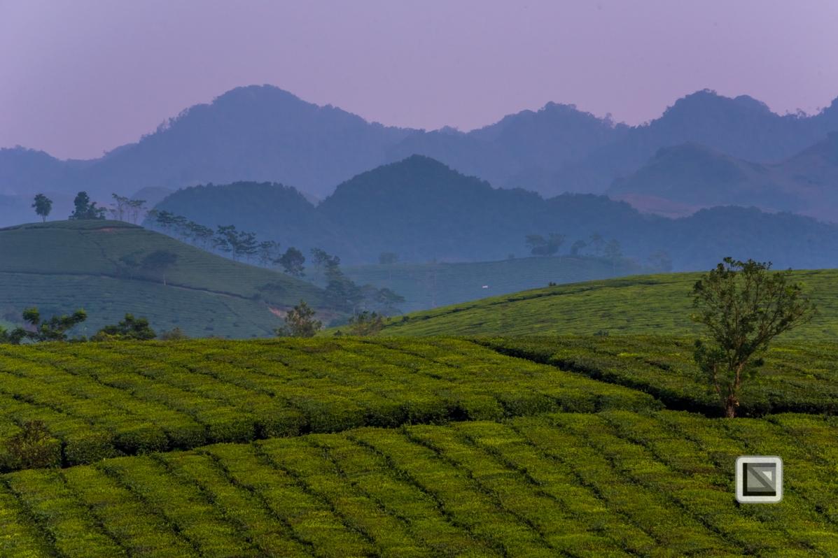 vietnam-moc_chau-son_la_province-39