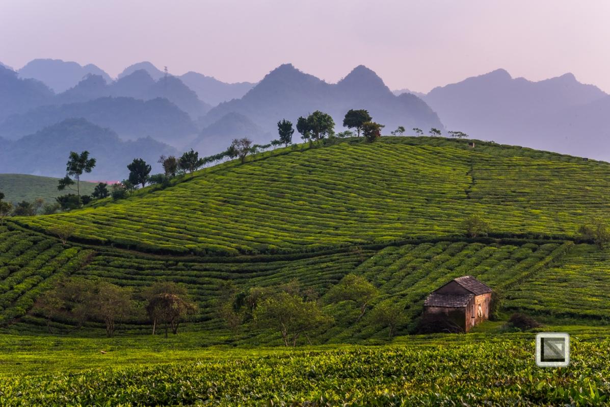 vietnam-moc_chau-son_la_province-57