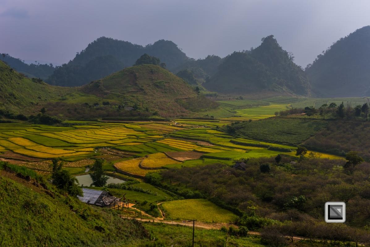 vietnam-moc_chau-son_la_province-9