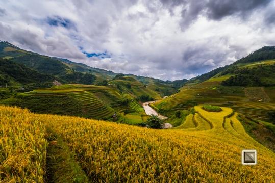 vietnam-mu_cang_chai-yen_bai_province-103