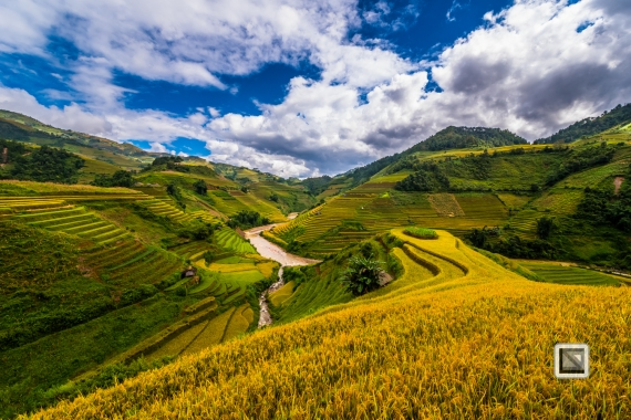 vietnam-mu_cang_chai-yen_bai_province-104