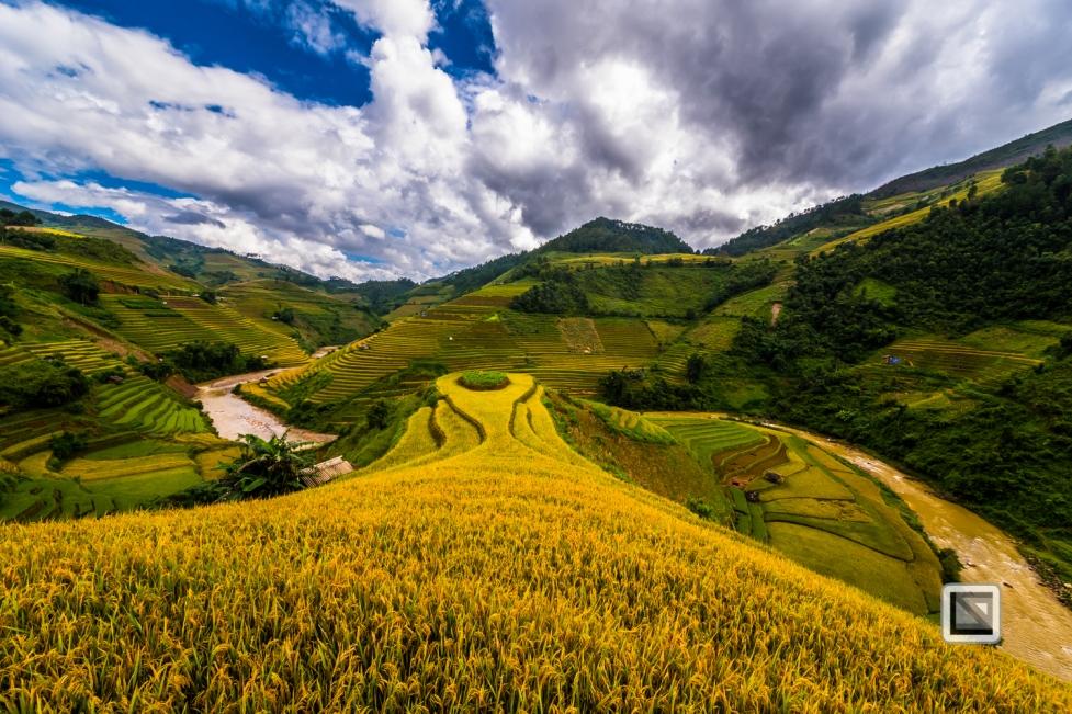 vietnam-mu_cang_chai-yen_bai_province-116