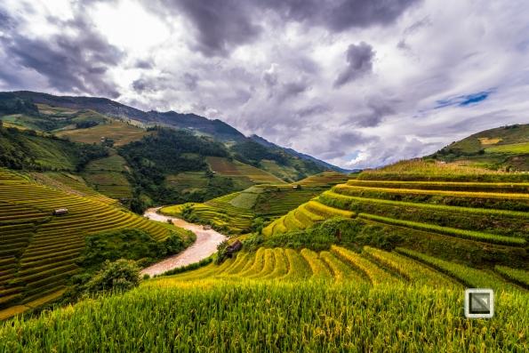 vietnam-mu_cang_chai-yen_bai_province-119