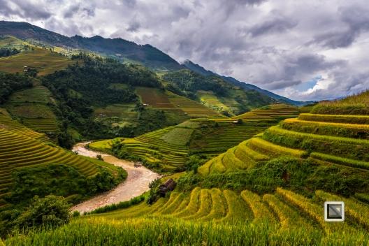 vietnam-mu_cang_chai-yen_bai_province-121