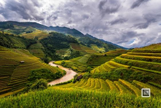 vietnam-mu_cang_chai-yen_bai_province-122