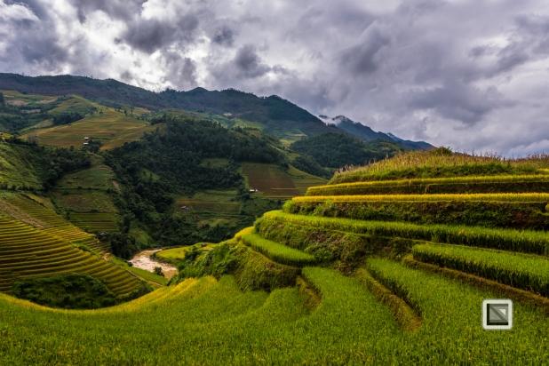 vietnam-mu_cang_chai-yen_bai_province-125