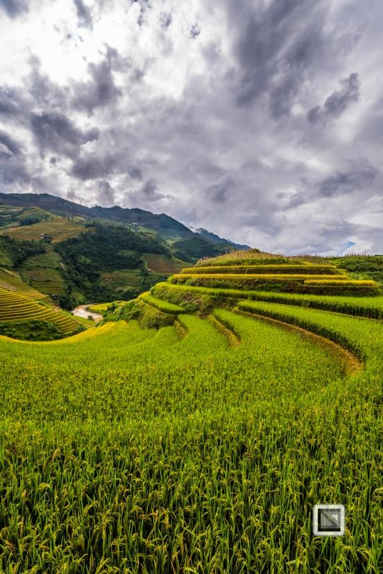 vietnam-mu_cang_chai-yen_bai_province-127