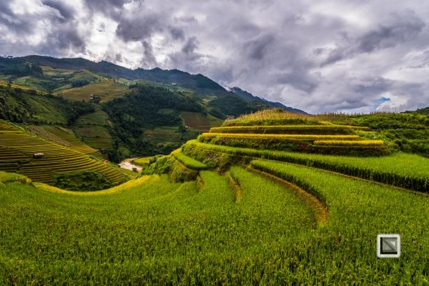 vietnam-mu_cang_chai-yen_bai_province-128