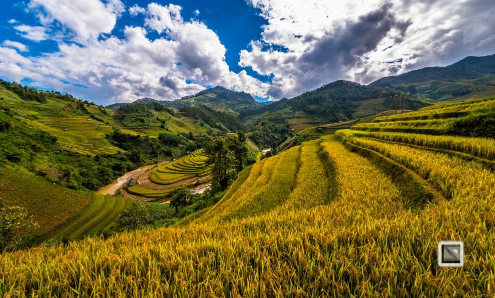 vietnam-mu_cang_chai-yen_bai_province-135