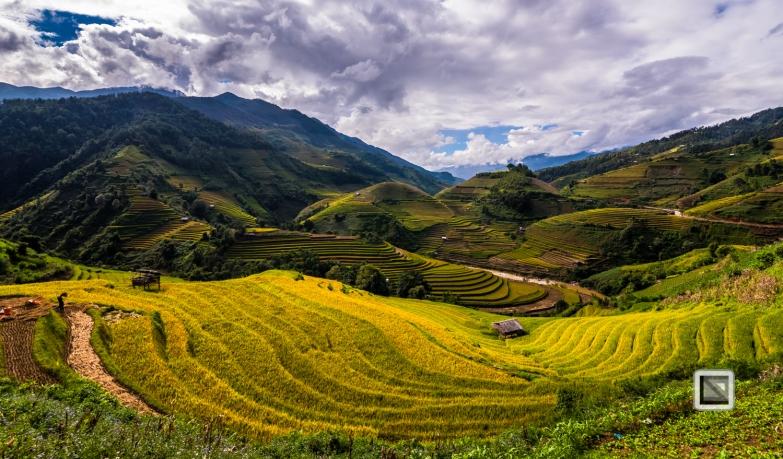 vietnam-mu_cang_chai-yen_bai_province-152